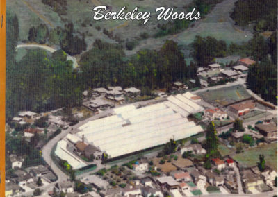 berkeley_woods